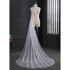 Cathedral Bridal Veils Tulle One-tier Oval With Cut Edge Wedding Veils